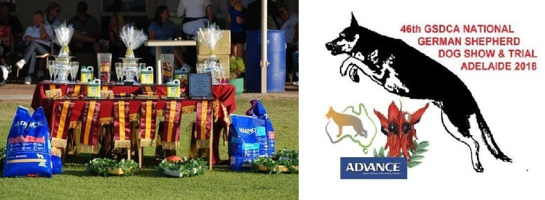 Permalink to: 2018 National Show & Trial